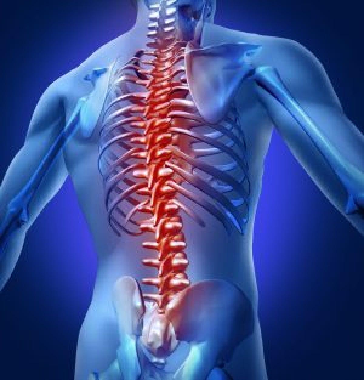 Leader Biomedical   Spine Intervention Solutions