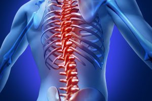 Leader Biomedical | Therapeutic Solution | Spine